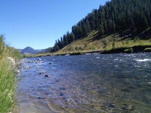 Gorgeous Montana